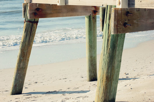 boardwalk-pilings-on-clam-p