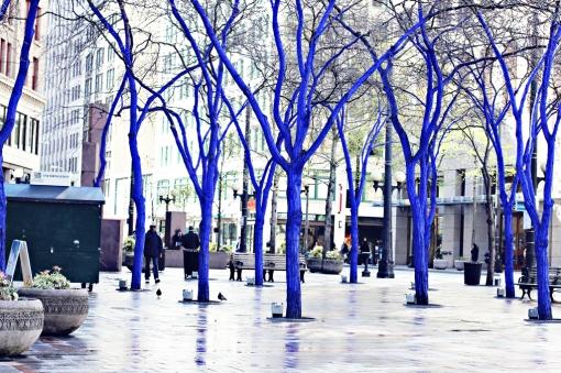 blue-trees-in-seattle