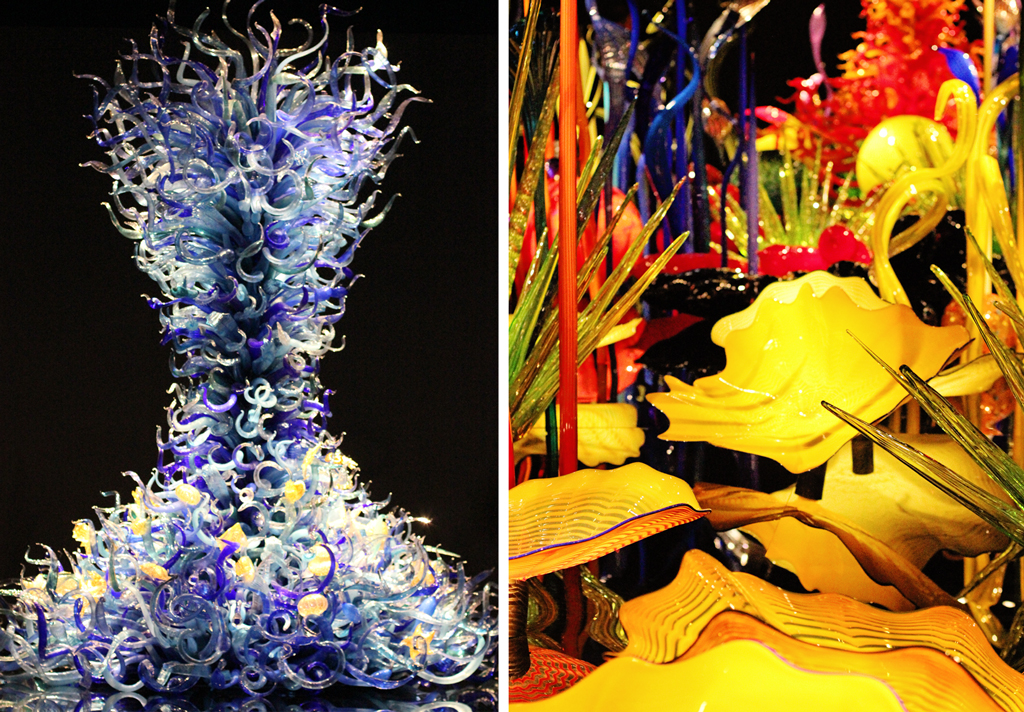 sealife-room-chihuly-garden