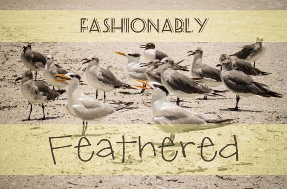 fashionably-feathered2