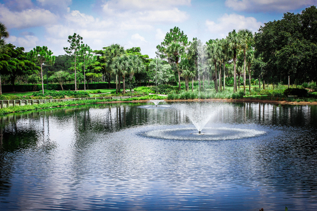 picture-perfect-landscaping-florida-fountains