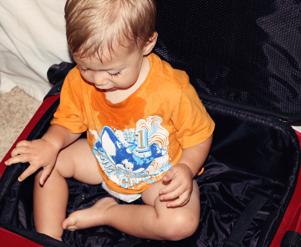toddler-adorable-boy-in-suitcase