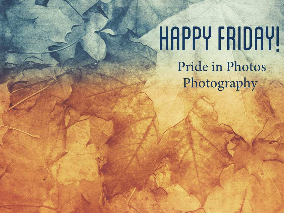 Happy Friday pride in photos photography