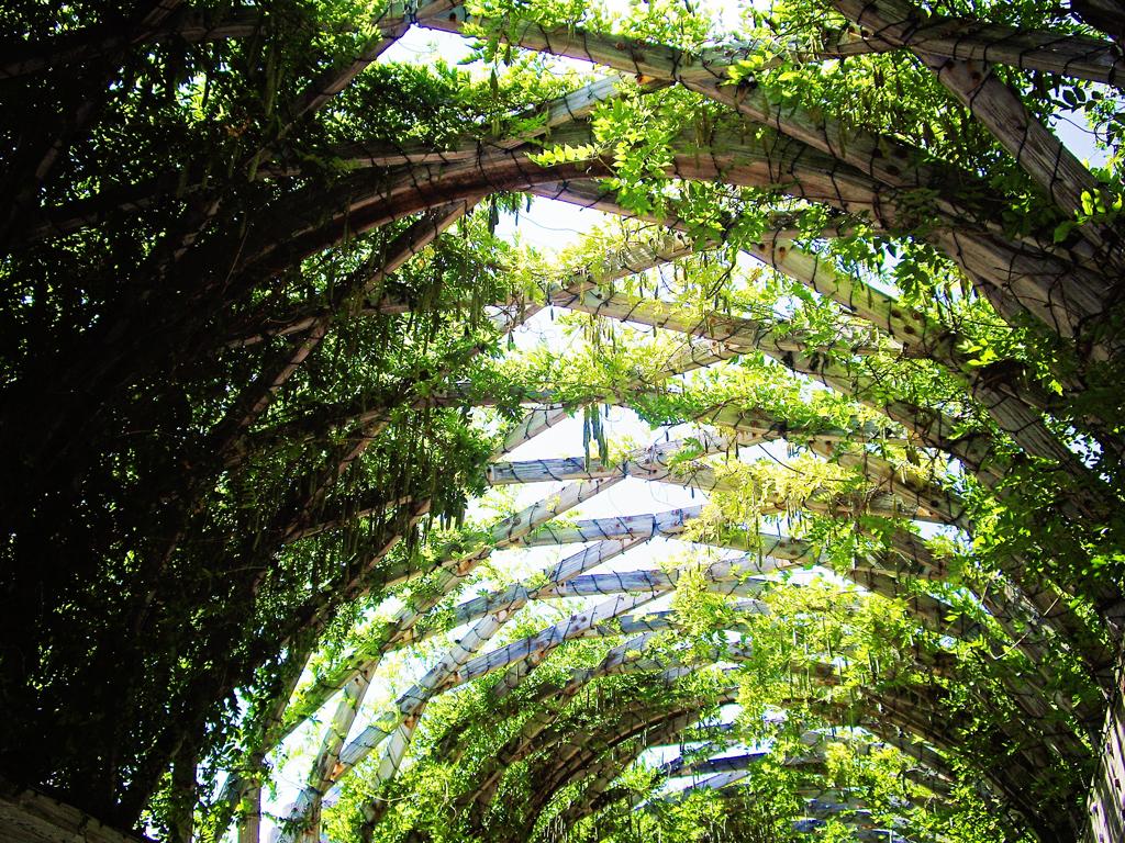 trellis-ceiling-christopher-columbus-park-boardwalk