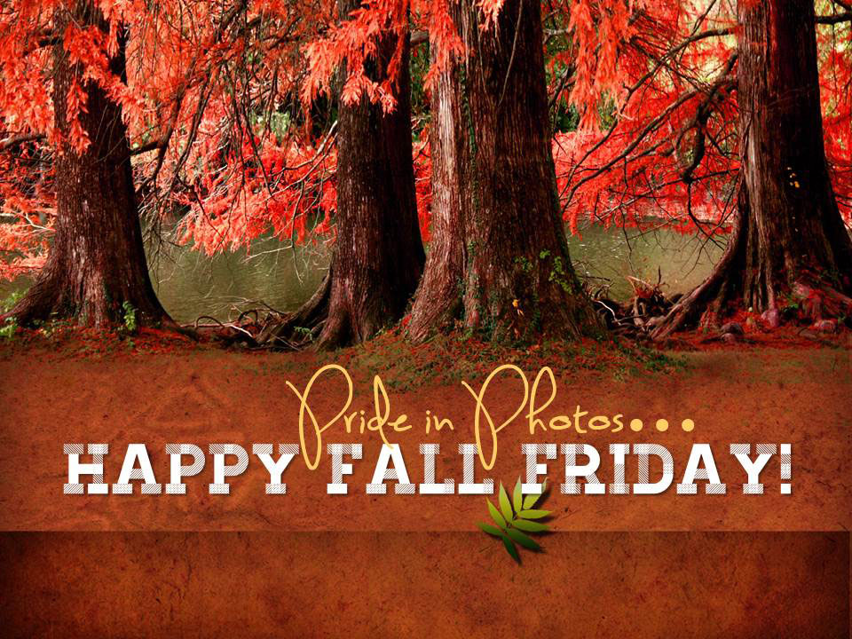 Happy-Fall-Friday