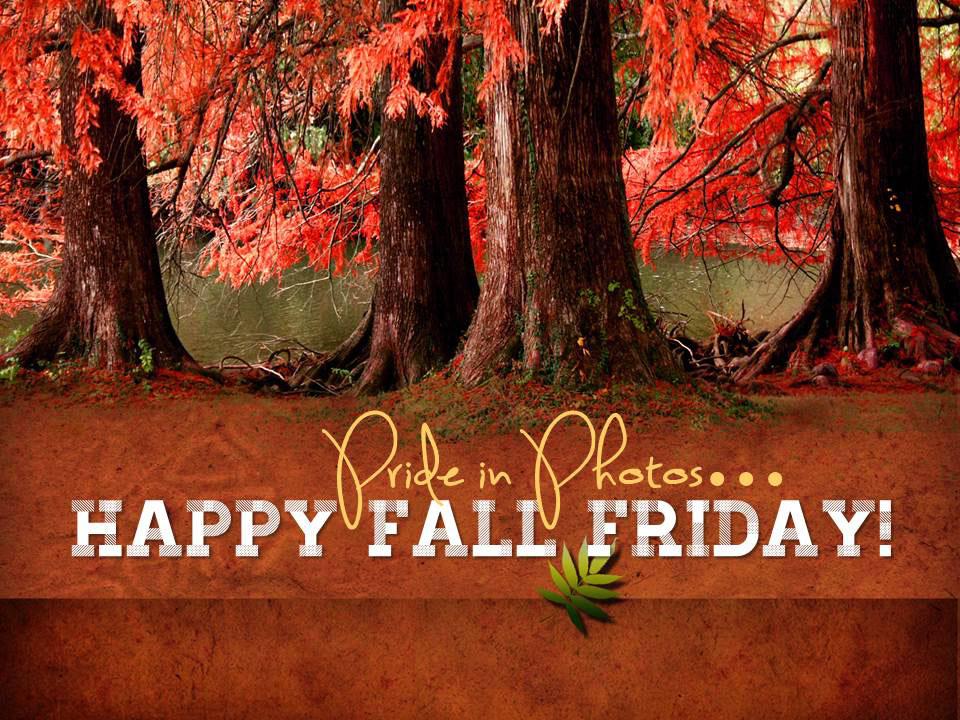 Happy-Fall-Friday