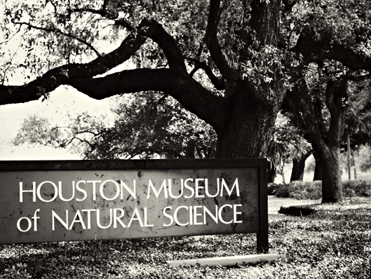 houston-museum-ofnatural-sc