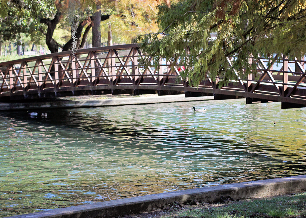 bridge-over-lake-hermann-park-texas