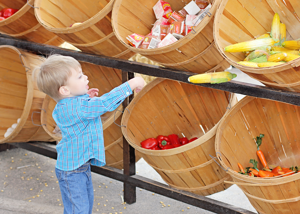 child-taking-food-to-market-at-houston-rodeo