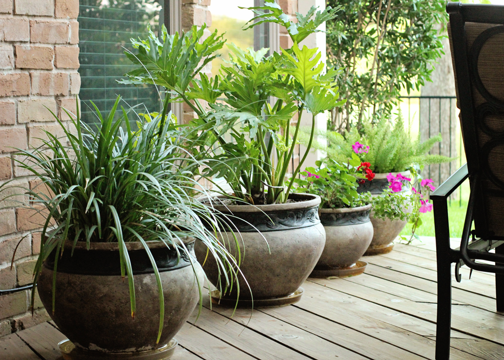 flower-pots-on-outside-deck