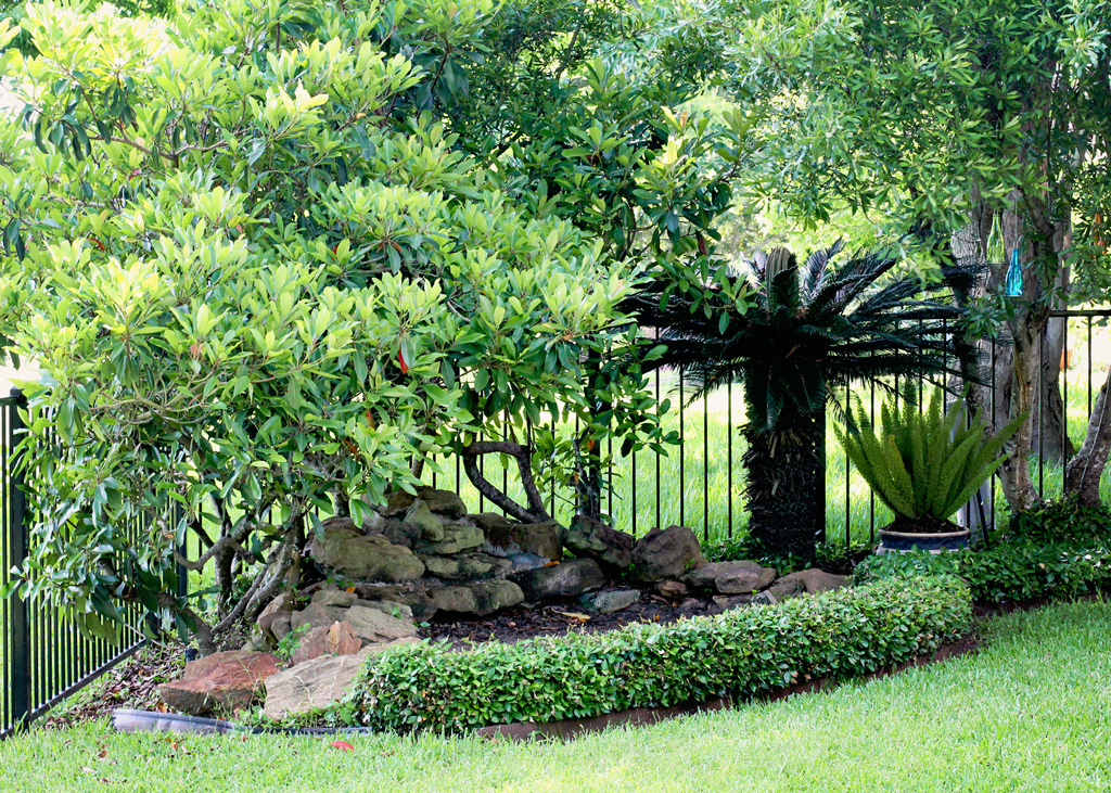 landscaping-ideas-for-your-yard