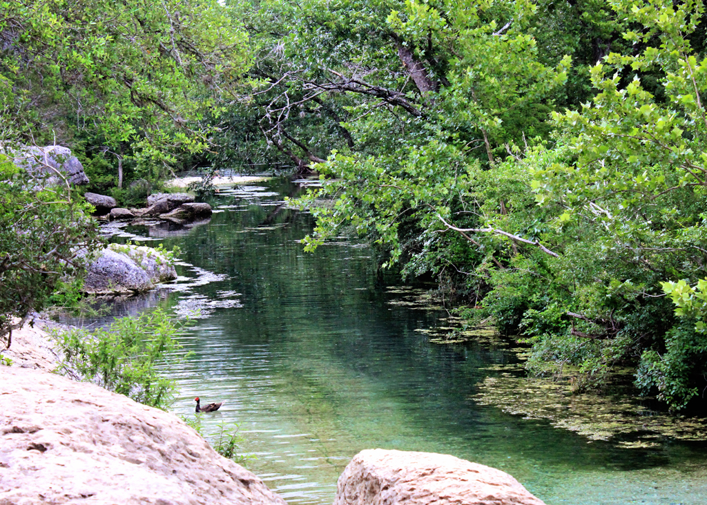 blue-waters-of-cypress-creek-tx
