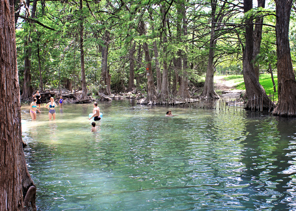 swiming-in-cypress-creek-wimberely-texas