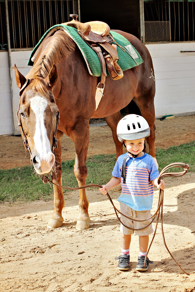 littlest-jockey-and-his-horse