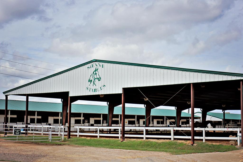 sienna-stables