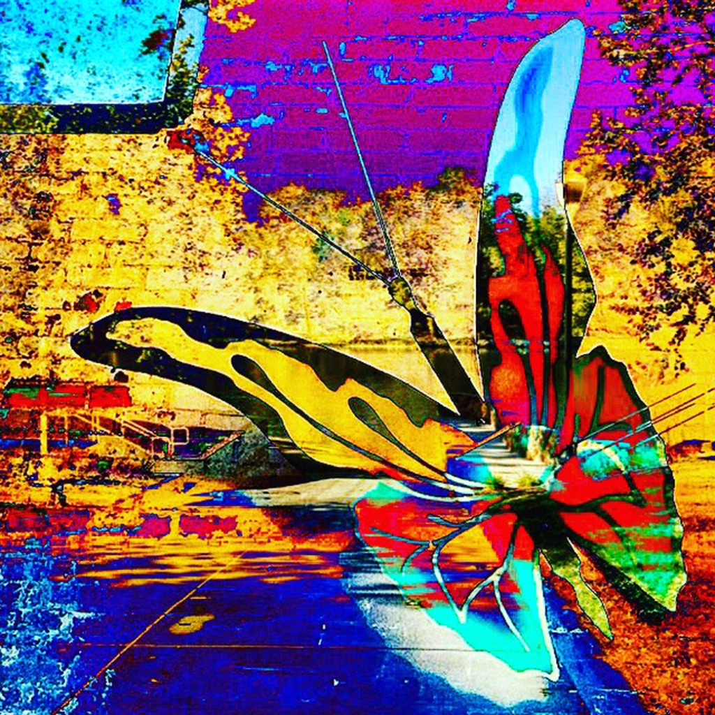 graphic-butterfly